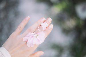 Holos hand cream